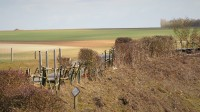 Le cratère de mine de la Boisselle (France – Somme)