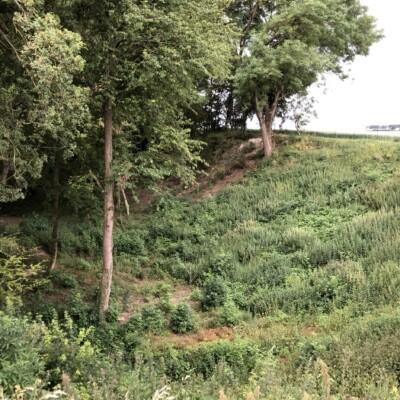 Hawthorn Ridge Crater à Beaumont Hamel (France – Somme )
